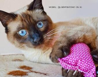 Valerian Cat toy