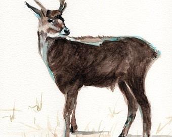 Stag, deer, reindeer ORIGINAL watercolor painting on paper