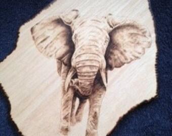 Wood Burned African Elephant