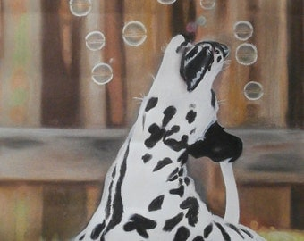 Dalmatian, framed painting by pastel