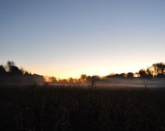 Feild landskape Sunrise