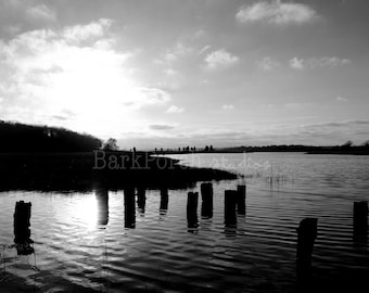 Cove at sunset; New England nature photography; Portsmouth, Rhode Island; Dock; river bend; Black and white; marsh; bedroom; bathroom; beach