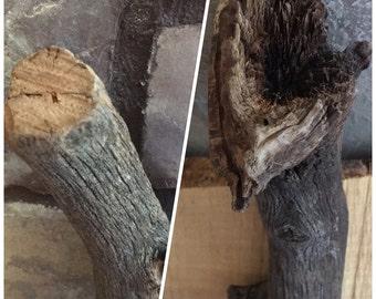 Arizona Driftwood Weathered Wood Oak Root Section *Touched 2x by Mother Nature's power* Vivarium*Aquarium*Terranium*Desert Theme*