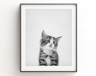 Cat print modern minimal black and white nursery print kitten instant download printable wall art photo nursery wall art decor animal print