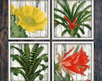 Set of Four Tropical Wall Art Leaf Printables, Cactus Wall Art, Rustic Wall Decor Beach, Large Square Home Decor Download (#3968c-4098)