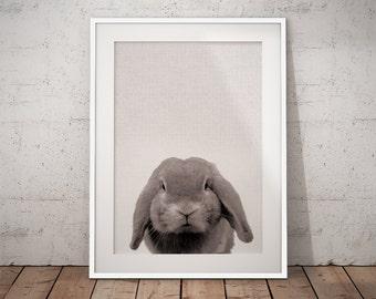 Woodland bunny art, Nursery bunny print, Nursery rabbit print, Woodland rabbit art, Woodland bunny print, Printable rabbit art, Bunny print