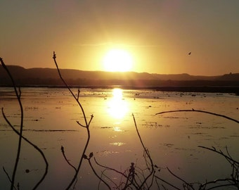 Sunset on a late fall day in Trempealeau Wildlife Refuge