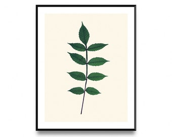 Botanical leaf art, botanical print, printable leaf, leaf wall decor, leaf printable, leaf wall art, printable art, nordic print art