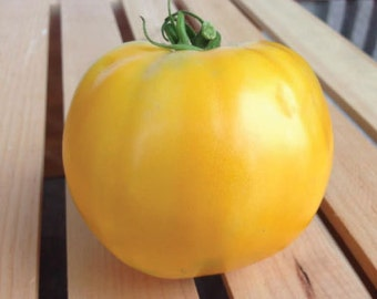 Organic-NON-GMO-Golden Jubliee Tomato Seeds-Low Acidity-Vegetable Seeds