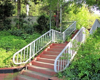 Port Orchard Stairway at the Waterfront, Vibrant Green Foliage, Warm Summer Day in Port Orchard, Sunlight Shining in Trees Digital Image