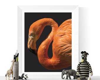 Flamingo Print | Flamingo Wall Art | Art Printable | Home Decor | Tropical Art | Pink and Navy | Flamingo Printable | Bird Art