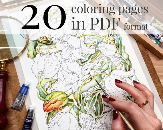 Coloring Book Botanical Weave Pages For Adults LineArt Instant Download Printable PDF Included 20 A4 Illustrations
