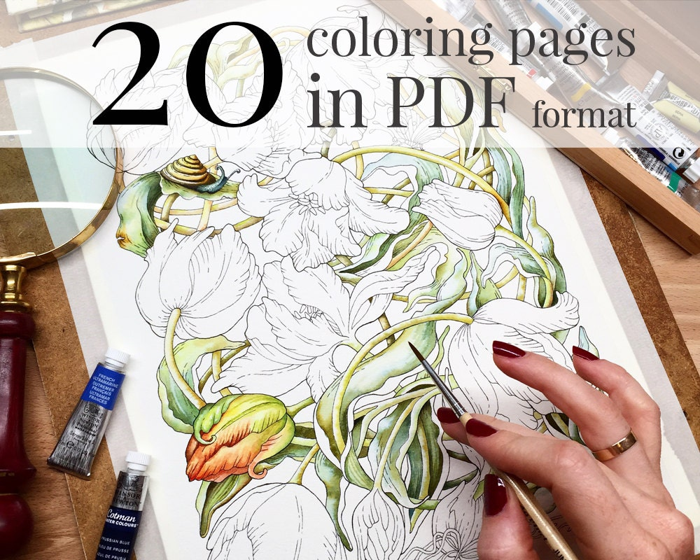Botanical Art Coloring Book : Coloring Book Botanical Weave Pages For The Botany Coloring Book Pdf