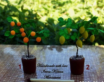 Miniature two trees- lemon and apricot Tree in Pot for your Dollhouse.The scale is 1:12.