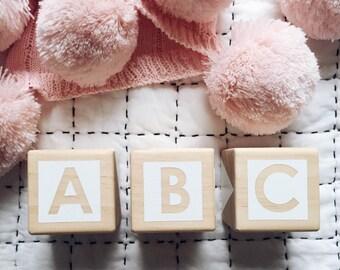ABC/123 Stacking Blocks