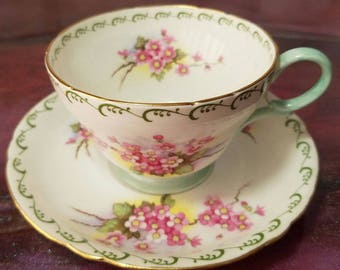 SHELLEY Tea Cup and Saucer Floral Pink Blossoms, Green Border, Gold Trim #13523