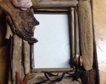 Driftwood shell frame