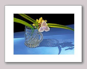 Photo Note Card, Spiderwort in Cup
