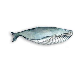 Watercolor Whale Magnet - Cute Animal Magnets - Kitchen Magnets