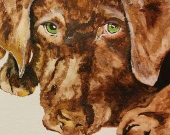 5 folded note cards, 5.5x4inches, with dog print, watercolor