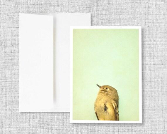 greeting card, photo greeting card, blank greeting card, card set, bird, yellow, stationary, greeting card set, gift set, mint green, cards