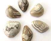 Gemstone Cabochon White Crazy Lace Agate Free Form Faceted Parcel SIX CABS