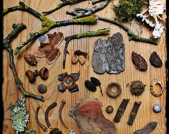 Faery Furniture materials, woodland miniatures, woodland crafts