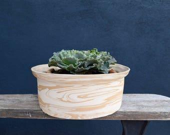 Succulent Landcape Planter // Indoor Planter with Organic Marbled Ceramic in Neutral Tones // Desert Toned Planter // Cactus Terrarium