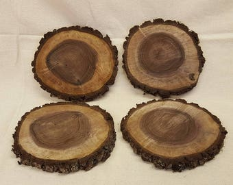 Walnut Wood Slices