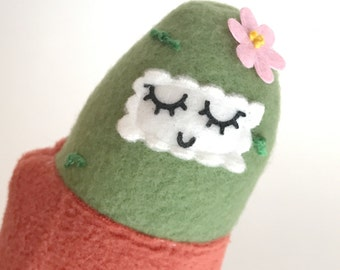 Small green cactus friend in a terracotta pot