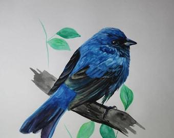 Blue Bird - Fine Art Print - 8x9