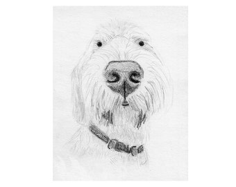Pet Portrait, Custom Dog Art, Sketch From Photo, Pencil Sketch, Personalized Gift, Pet Memorial, Dog Drawing, DIY Printable, Inklets