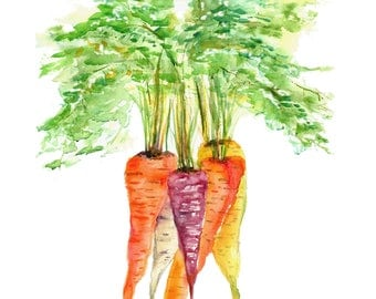 carrot print- carrot watercolor print- watercolor vegetables-  carrot watercolor-  kitchen wall art-  kitchen decor-  housewarming gift