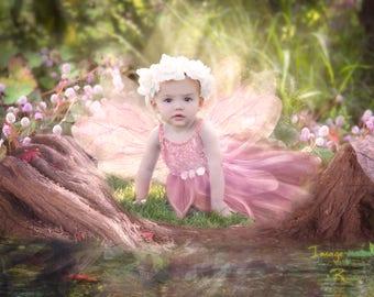 Fairy pack | Digital Background | digital backdrop |Toadstools |log |forest