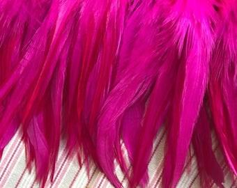 MIRAGE COQUE TAIL / Bright, Neon Fuchsia  /  258 / Rollback