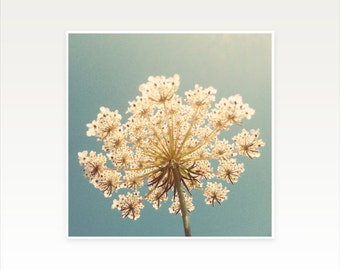 CLEARANCE SALE! Flower Art, Blue and Gold Wall Art - Queen Anne's Lace