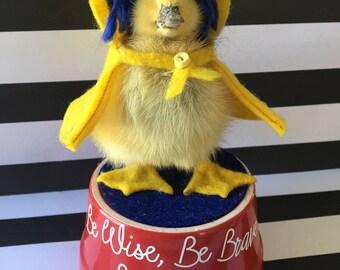 Weird Taxidermy, Duckling, Coraline Miniature, Coraline Jones Ducky, handmade, custom, yellow raincoat, Neil Gaiman, OOAK, Duck, Rogue Gift