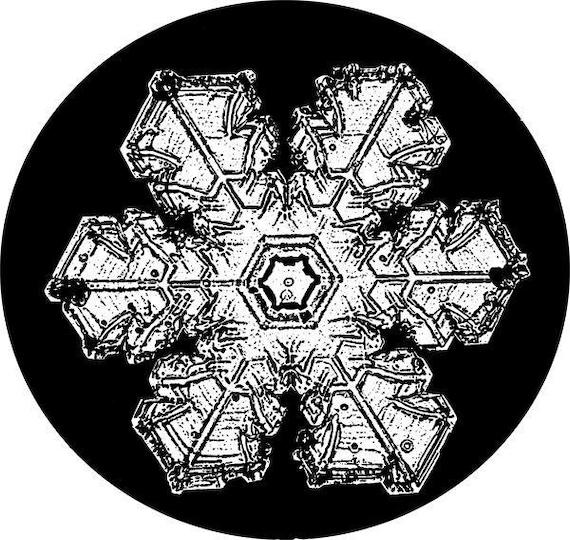 snowflake specimen clipart png clip art Digital Image Download science graphics printables digi stamp digital stamp