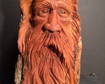 Cottonwood bark woodspirit