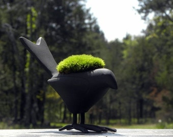 Black Bird-Black raven Gothic Mossy planter-Crow about this one to your friend-Live Mood moss planter.SILVER also available.