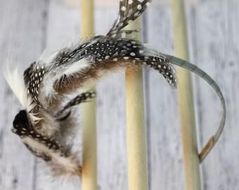 Natural guinea hen feather hair band. Polka dot black and white with grey gray ribbon. Boho fascinator. hb016