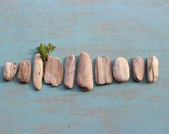 Rustic Oval Driftwood Nuggets for Beach Art , Mobile Making , Beach wedding Decor & nautical Home Decoration BWN10