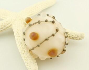 SRA Lampwork Glass Hollow Bead Sea Urchin Sea Shell Focal Ocean Beach Seashell White, Gray, Brown