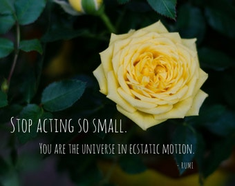Stop Acting So Small Photo Greeting Card, 4x5 miss you cards blank inside, encouragement care friends love support inspirational, rumi quote
