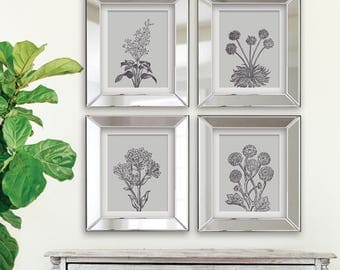Wild Flowers Botanical Prints (Series C ) Set of 4 - Art Prints (Featured in River Rock on Fog) Botanical Flower Art Prints