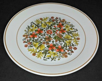 1970s Corelle Livingware Indian Summer Dinner Plate / Vintage Corelle Indian Summer Dinner Plate