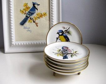 Vintage Kaiser porcelain bird coasters AK Germany bird coasters