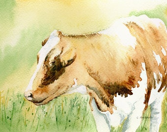 Original 5 x 7 Watercolor Painting of a Guernsey Dairy Cow