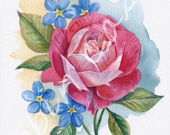 Fuschia Rose Watercolor Painting