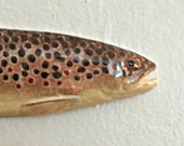 Small Brown Trout - brown and yellow - BR1217